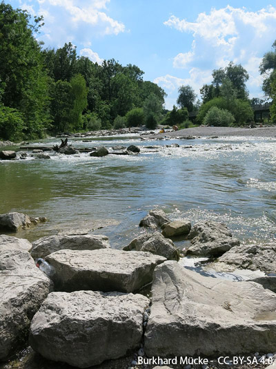 Riverrestoration Isar