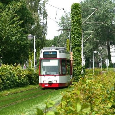 Straßenbahn auf Rasengleis